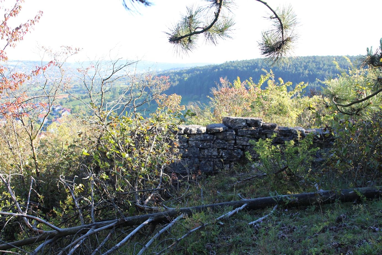 Mauerreste der Burg Falkenberg